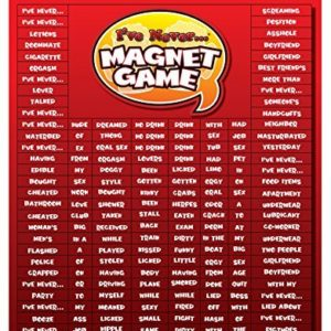 I've Never Magnet Game